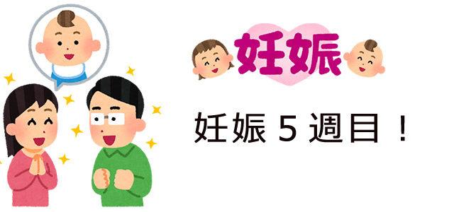妊娠5週目